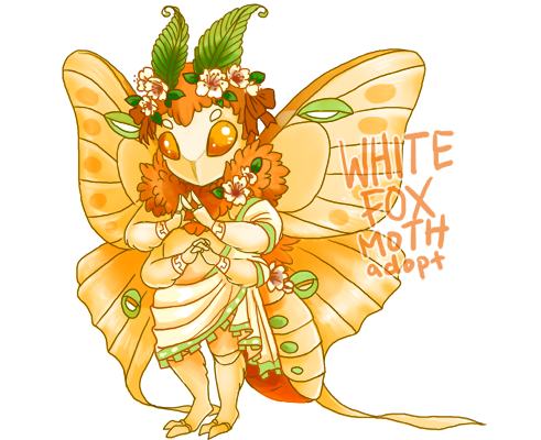 apricotmoth_watermarked_by_cenobitesquid