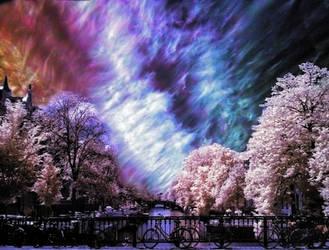 Timeless Amsterdam by Sercy