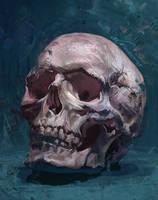 skull by kkgy
