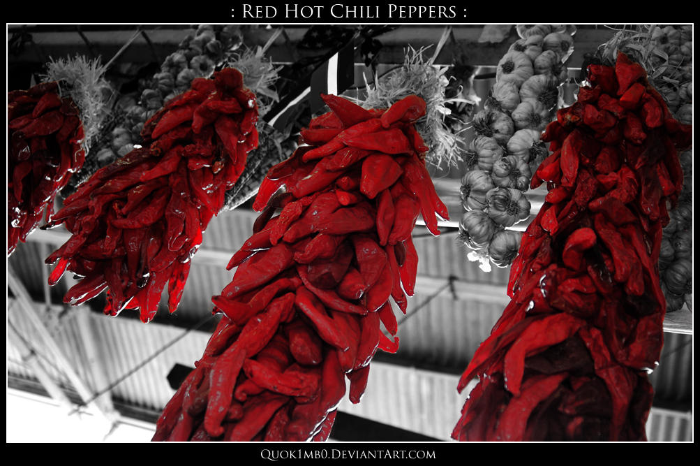: Red Hot Chili Peppers : by Quok1mb0