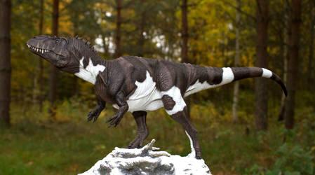 Torvosaurus Therese 115