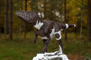 Torvosaurus Therese 116