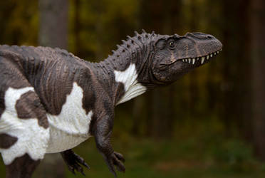 Torvosaurus Therese 118