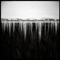 Le froid by C-Jook
