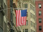 Hanging Flag 360310