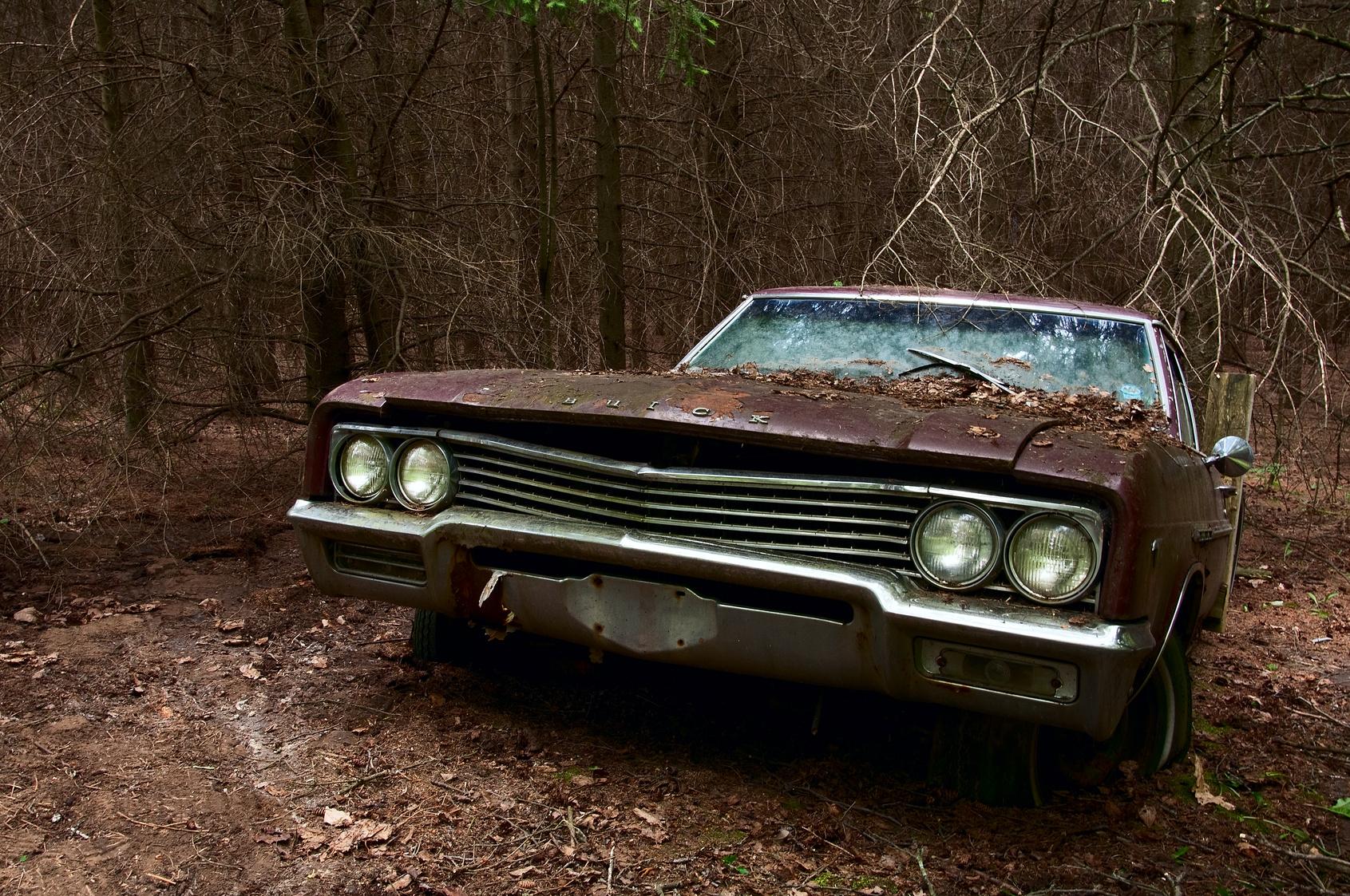 Brown Car 16771598