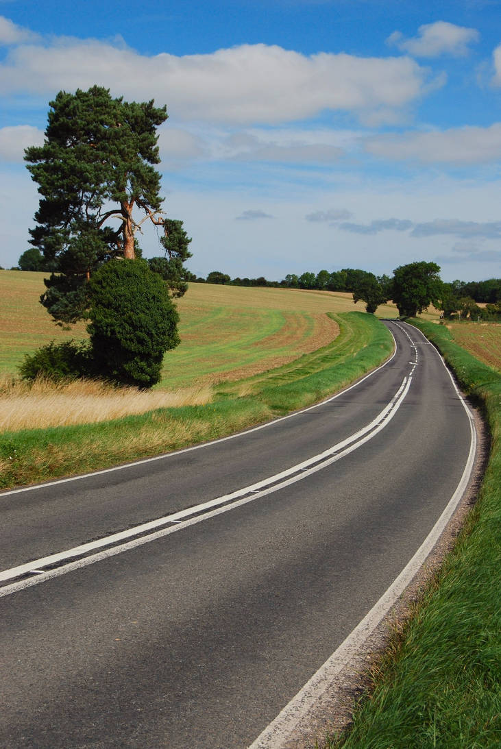 Country Road 16238634 by StockProject1
