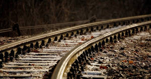 Railroad Track 5801687 by StockProject1