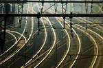 Railroad Wires 1603801