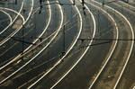 Train Tracks 1603789
