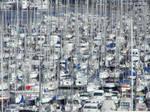 Crowded Port 328450