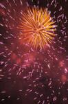 Orange Fireworks 31505