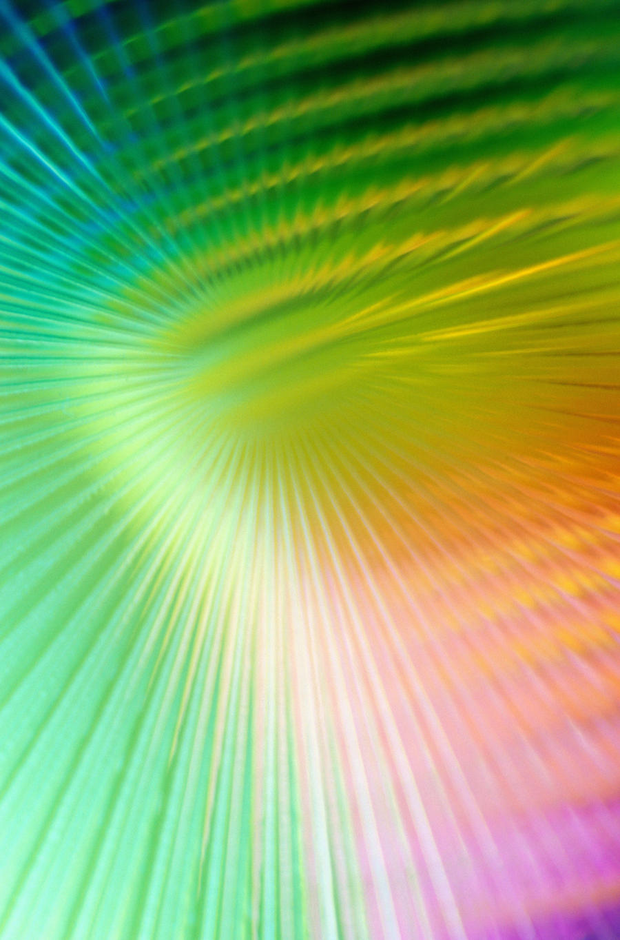 Rainbow Texture 3501408