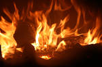 Burning Campfire 5700094