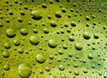 Green Raindrops 12981691