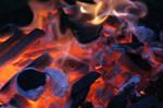 Burning Ash 16568025
