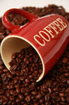 Coffee Cup 14045159