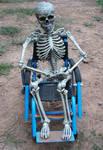 Wheelchair Skeleton 4255811