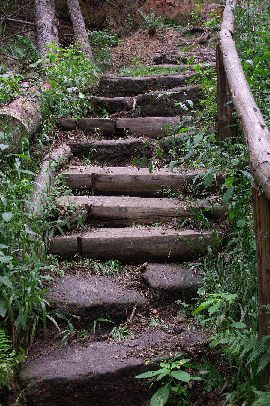 Broken Stairs 4433689 by StockProject1 on DeviantArt