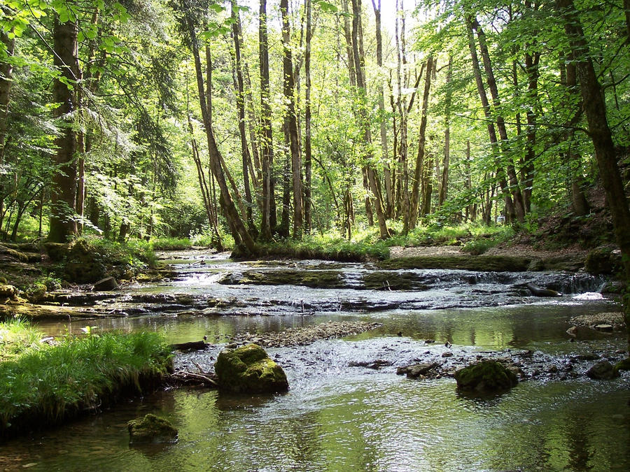 Flowing Stream 4572398