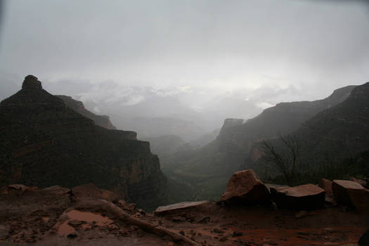 Foggy Canyon 14552798