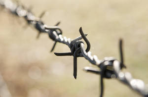 Barbed Wire 12734607 by StockProject1