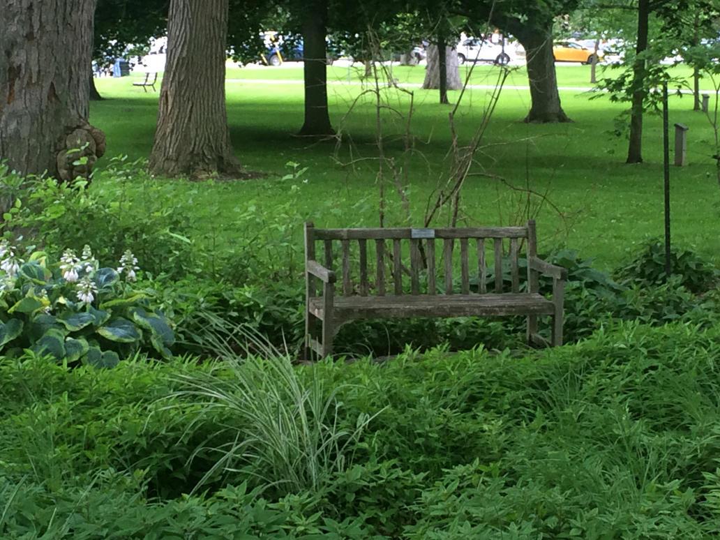 Garden Bench by Lyricanna