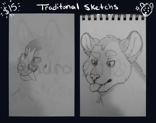 Traditional Sketch Sale! by NauroK