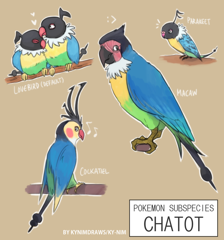 Pkmn Subspecies: Chatot by ky-nim