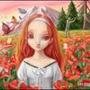 red poppy on weald by yangge