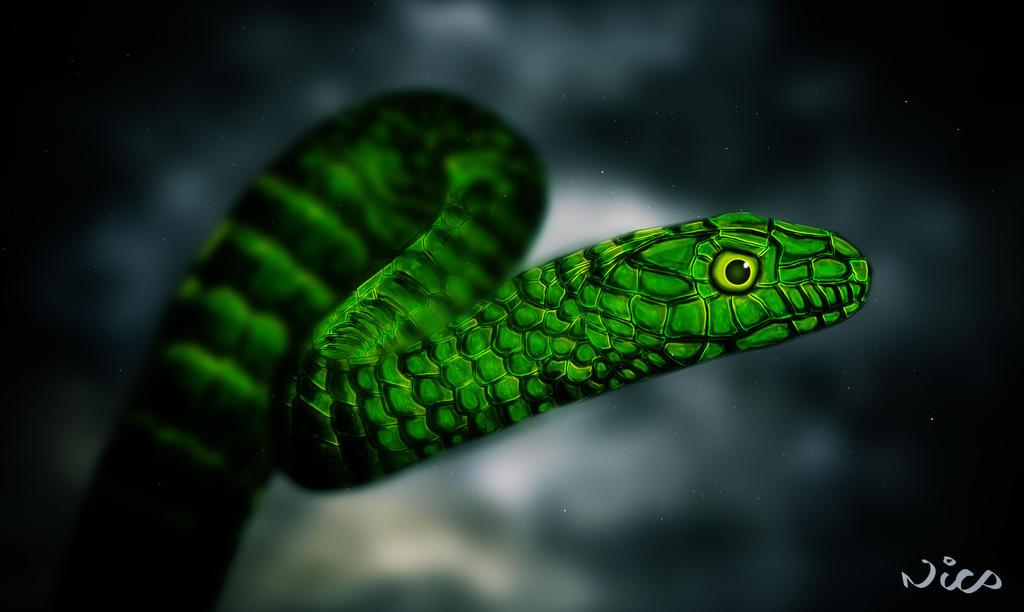 Snake by DropkickNicos