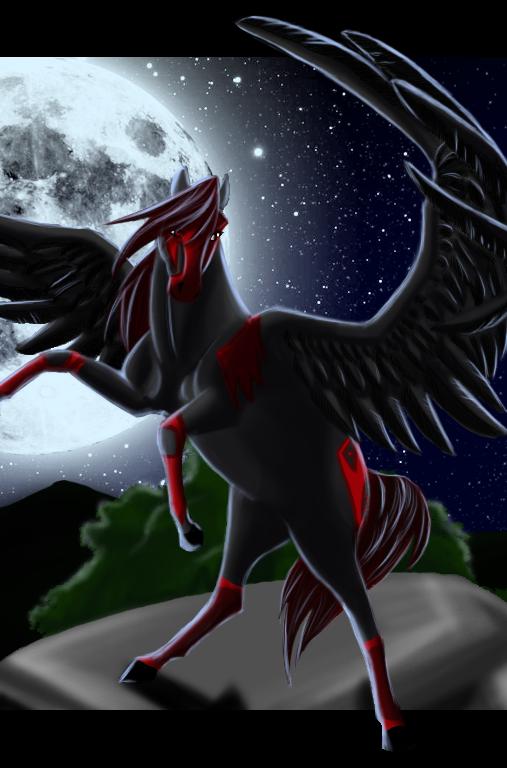 Night-meru's Profile Picture