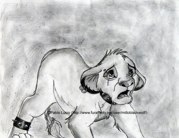 Depressed wolf drawing - photo#24