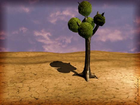 Alone in the desert.