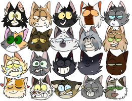 LC Expressions by CattNaps