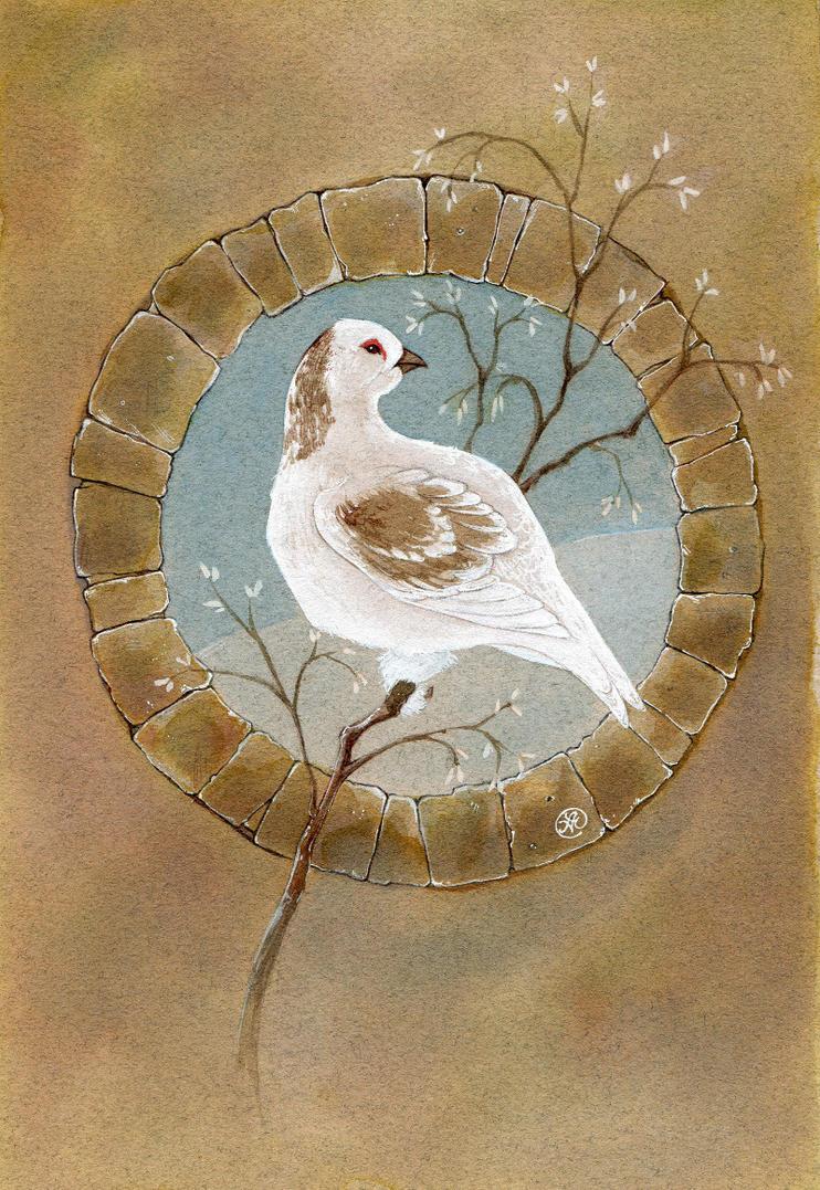 white grouse by Neko-Art