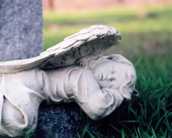 Slumbering Angel by druideye