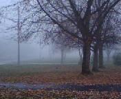 Haunted Road by Elementalist-1