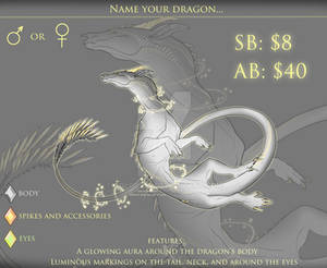 Dragon auction [CLOSED] PayPal