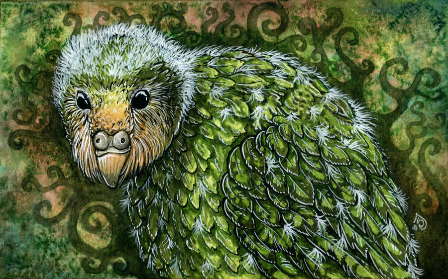 Baby kakapo by THE-RAttie on DeviantArt