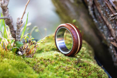 Mahogany ring by mygeekymuse