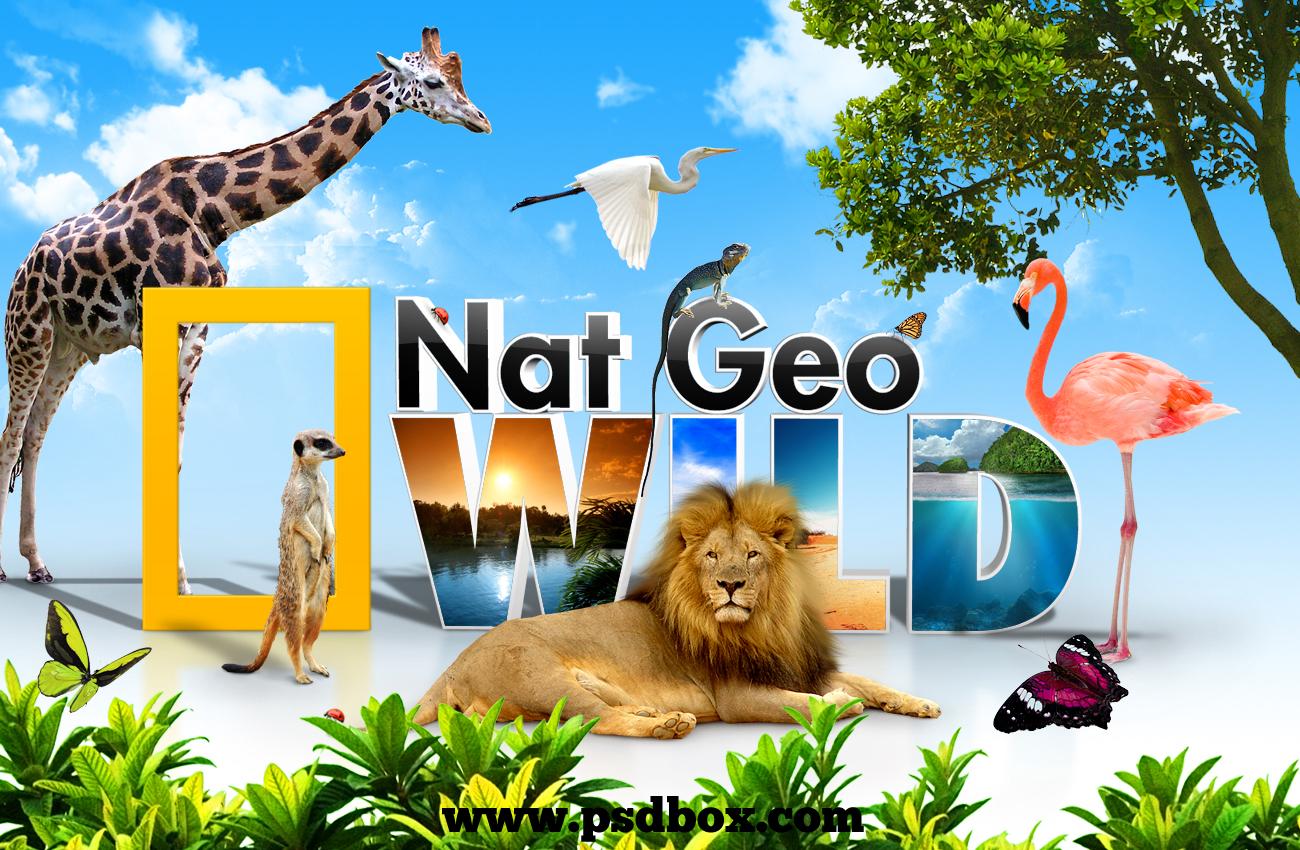 Cat behaviorist Nat_Geo_Wild_wallpaper_tut_psd_by_GhostFight3r Media