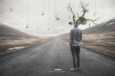 Surreal Manipulation Photoshop Tutorial (EN|ES) by Andrei-Oprinca