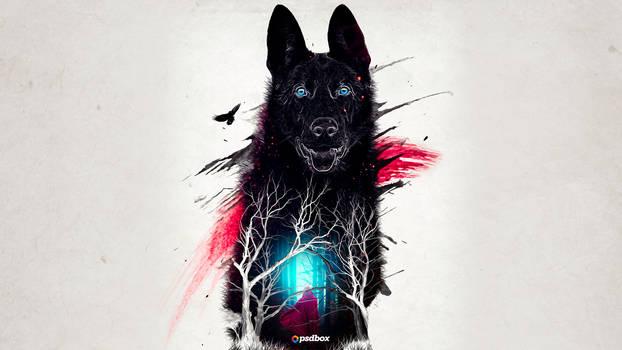 Abstract Wolf Fine Art