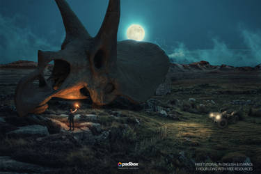 Giant Triceratops Fosil by Andrei-Oprinca