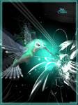 Petit Colibri