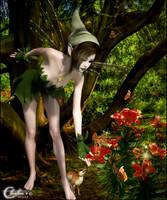 La Fee et le Dragon Magique by cflonflon