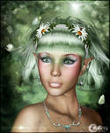 Terra Nostra - The Forest Watcher