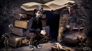 Steampunk En Bibliothque