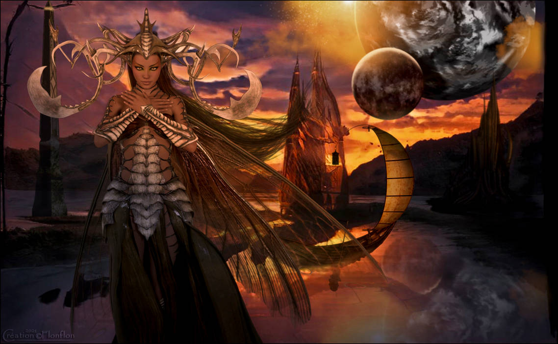 Terre des Elfes de la Nuit